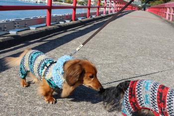 福浦橋−2