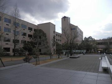 P1300009 (360x270)