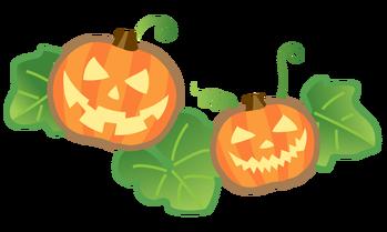 10月のかぼちゃ