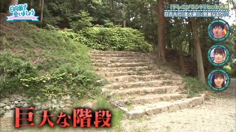日向坂46 オードリー .mp4_snapshot_17.04.020