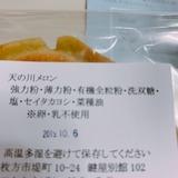 天野川セイタカヨシ (2)