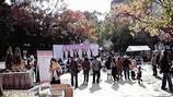 ひらかた多文化フェスティバル2009  2