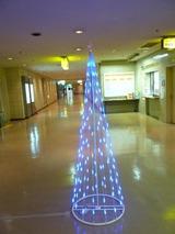 さんぷら座のクリスマスツリー・・・(ですよね?)