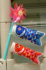 診療室の鯉のぼり  3