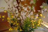今週の待合の花 09M1stW