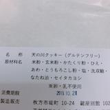 天野川セイタカヨシ (5)