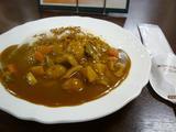 白川 根菜カレー  1