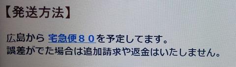 DSC_0771 (2)