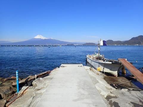 浮き桟橋リニューアル計画