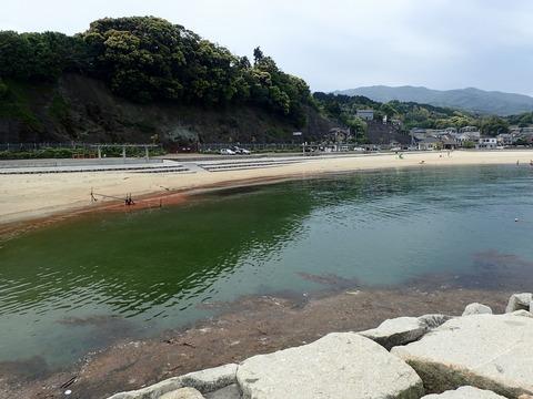 砂浜には赤潮