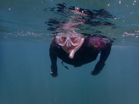 スーイスイッと泳げるように (1)