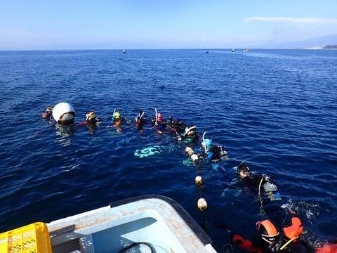 水面集合at淡島
