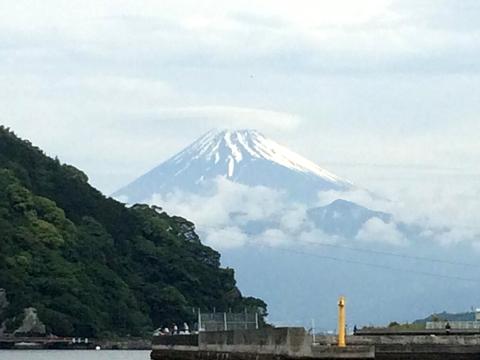 富士山の傘