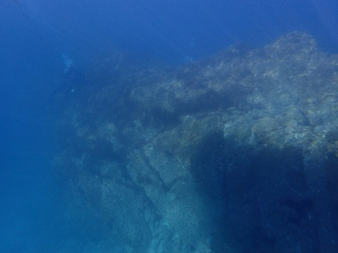 水面から撮影今日の淡島 (2)