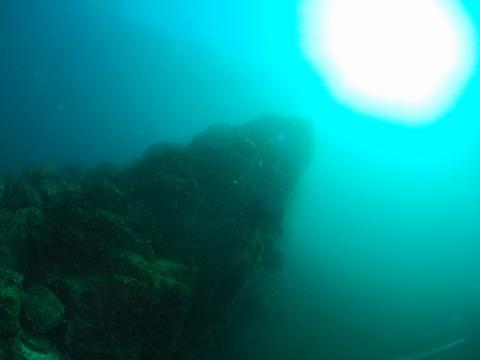 淡島の根頭