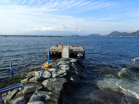 浮き桟橋の修復ほぼ完了