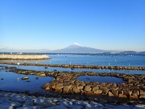 富士山くっきり@平沢マリンセンター