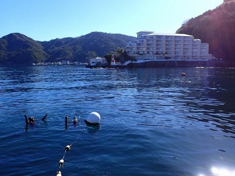 淡島の海へいざ