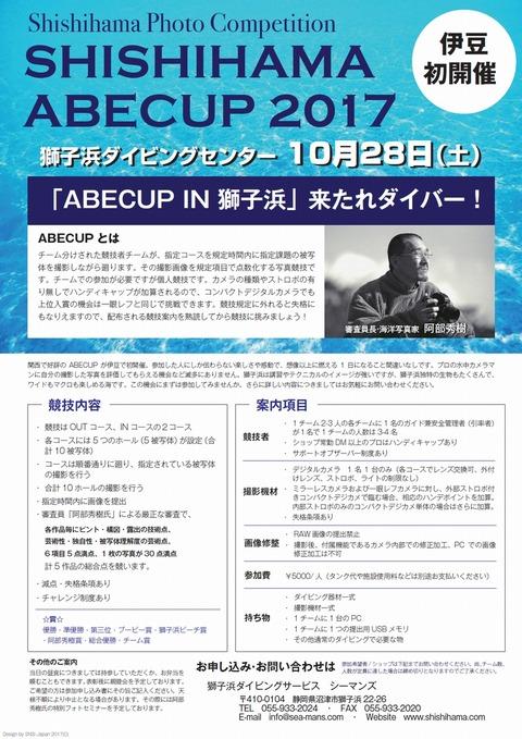 ABECUP2017