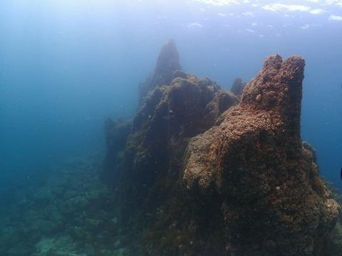 淡島海底 (3)