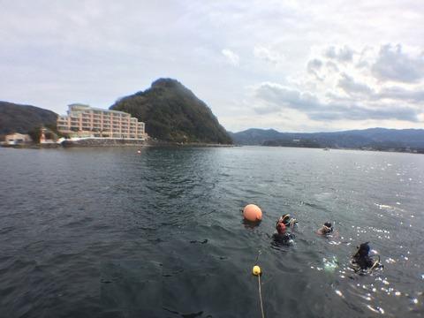 淡島も穏やかでした (1)