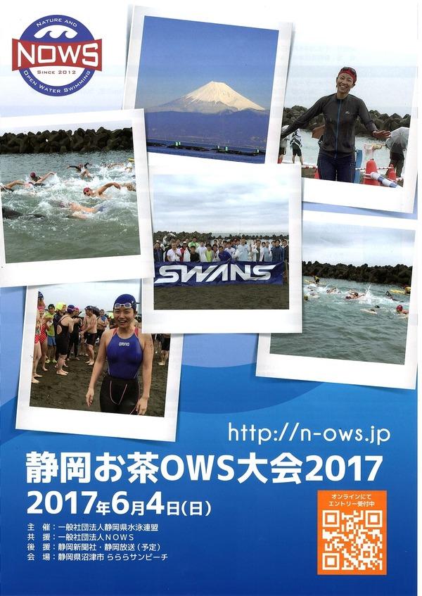 静岡お茶OWS大会2017 (1)