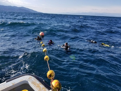 波のある淡島ボート (2)
