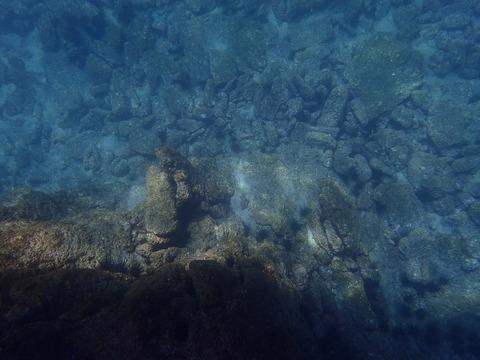 水面から撮影今日の淡島 (1)