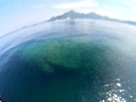 淡島の根がクッキリ