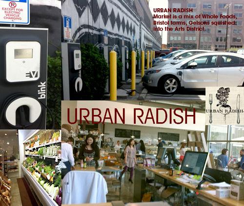 Urban Radish