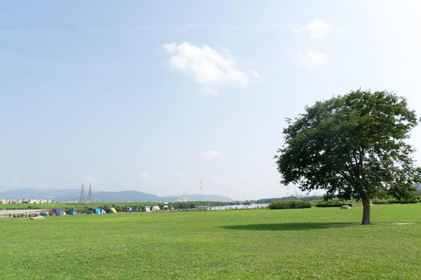 淀川河川公園-1908041