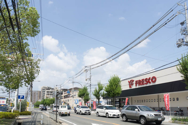 フレスコ-1608192