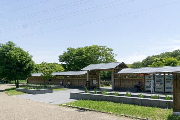 山田池公園-1805251