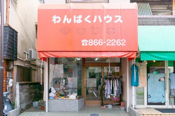 wanpaku_gaikan-20200827
