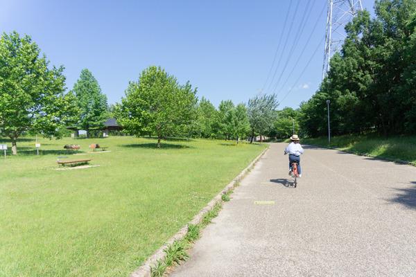 山田池公園ナーガ-12