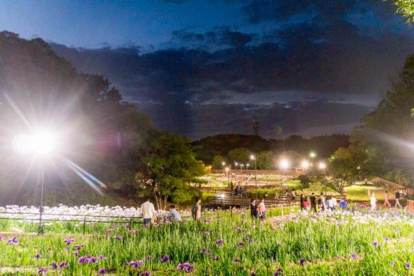 山田池公園-1706037
