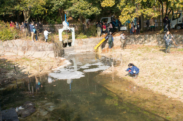 池の水全部抜く-18012057