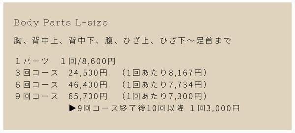 枚方 ベースキャンプ  脱毛 男性 メニュー-6