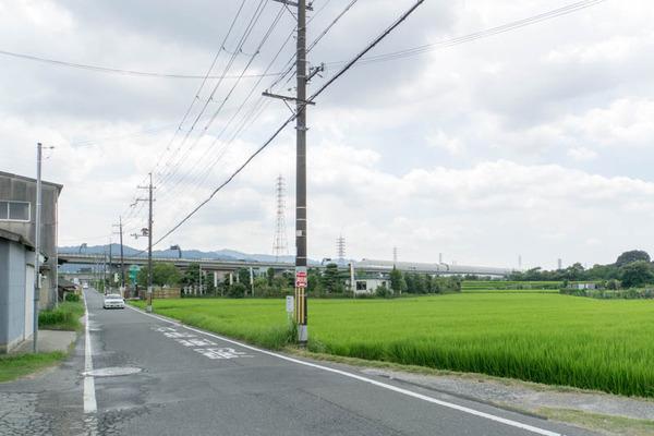 グリーン京阪-1708231