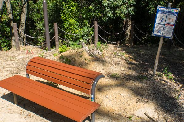 星ヶ丘公園-19100910
