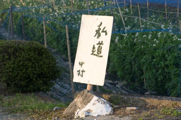 なかむらしどう-1804202