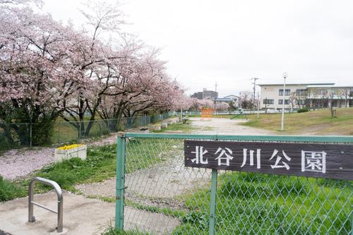 nagao-kouen-9