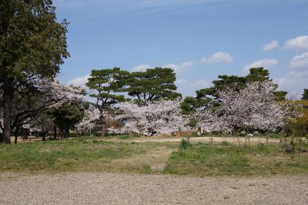 百済寺跡-6