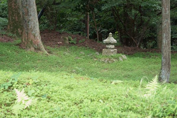 比叡山-194