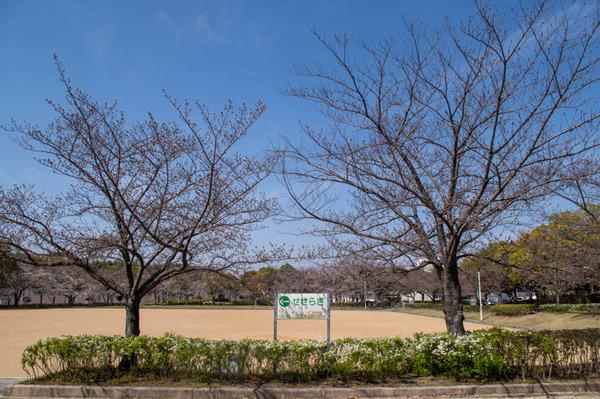 松井山手-2103241-3