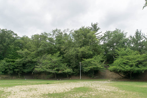 香里ケ丘南公園-18062816