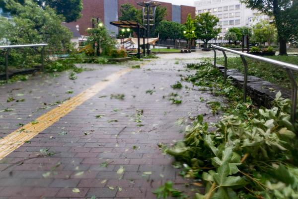 台風21号2-1809046