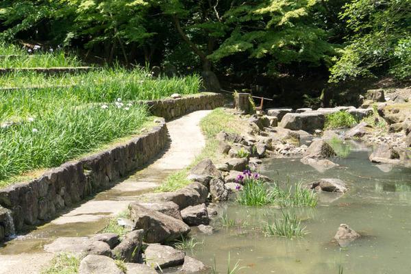山田池公園-18052513