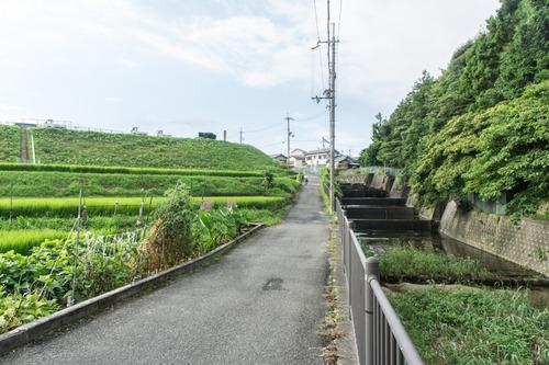 責谷川-1408199