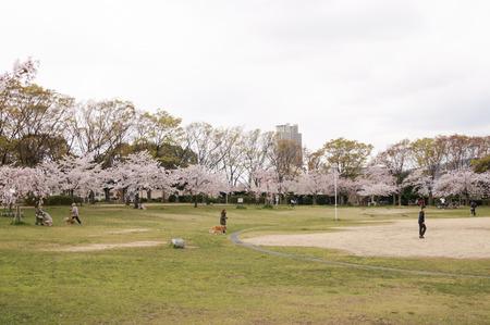 楠葉東公園-4